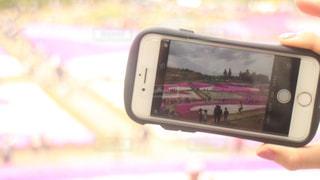 画面越しの花畑の写真・画像素材[2124883]