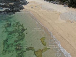 やっぱり綺麗だよ。沖縄の海の写真・画像素材[2286016]