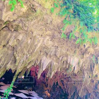 ガンガラーの谷の写真・画像素材[2125412]