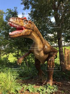 恐竜 模型の写真・画像素材[2125804]