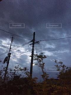 曇りの日の電線と木と空の写真・画像素材[2126216]