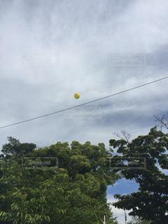 電線に引っかかった風船の写真・画像素材[2126300]