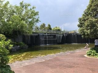 川の脇に木がある小道の写真・画像素材[2127019]