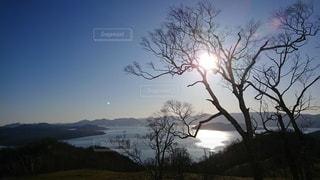 背景に山がある木の写真・画像素材[2493998]