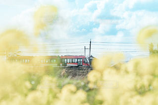 電車と菜の花の写真・画像素材[3064725]