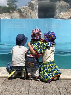 アシカの水槽を見る3人の写真・画像素材[2128502]