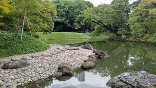 日本庭園の写真・画像素材[3722596]