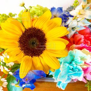 花の写真・画像素材[2148046]
