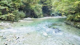 川の隣の水の写真・画像素材[2129101]