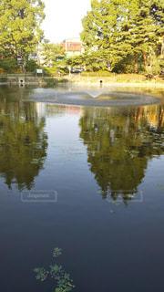 池の鏡の写真・画像素材[2133350]