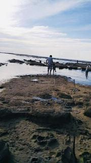 貝殻拾いの写真・画像素材[2138957]