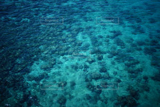 水面の写真・画像素材[2138671]