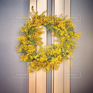 黄色い花の写真・画像素材[2137629]