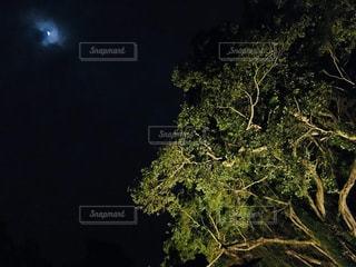 闇夜の月の写真・画像素材[2137741]