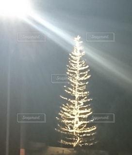 ツリーのライトアップの写真・画像素材[2148999]