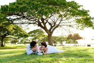 公園で寝転びショットの写真・画像素材[2141841]