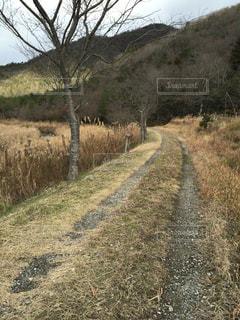 道の写真・画像素材[2150850]