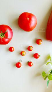 フレッシュトマトの写真・画像素材[2312809]