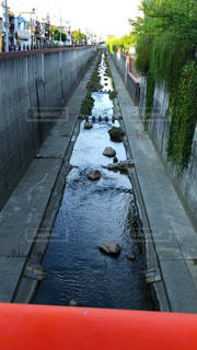 新湊川の写真・画像素材[2986014]