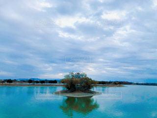 加古大池の写真・画像素材[2996377]