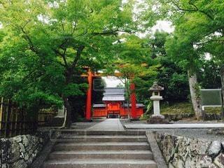 風景 - No.82376