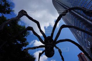 蜘蛛のオブジェの写真・画像素材[2175185]