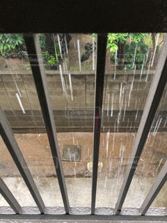 雨降りの写真・画像素材[2268179]