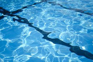 学校のプールの写真・画像素材[2151335]