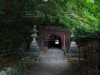 太宰府天満宮裏のトンネルの写真・画像素材[2153495]