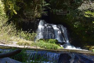 鹿児島の滝の写真・画像素材[2176640]
