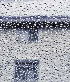 雨粒の写真・画像素材[2188529]
