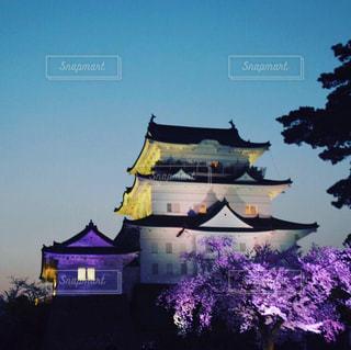 城のライトアップの写真・画像素材[2161576]
