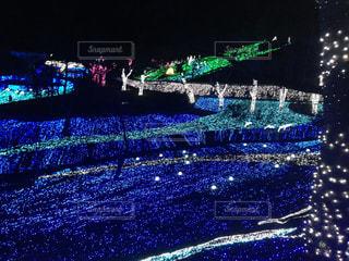 相模湖プレジャーフォレストのイルミネーションですの写真・画像素材[2172376]