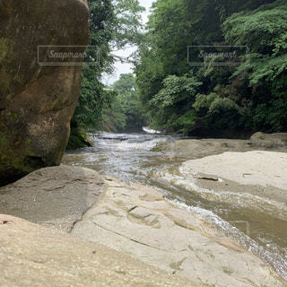 岩のクローズアップの写真・画像素材[2183917]