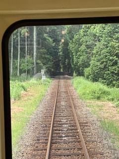 森を抜ける列車の写真・画像素材[2183921]
