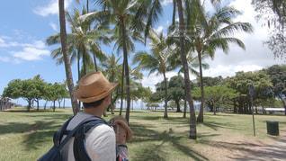 ヤシの木の隣に立っている男の写真・画像素材[2214252]