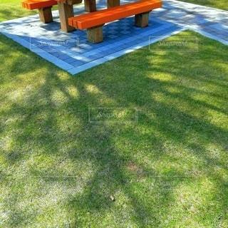 ベンチと芝生の写真・画像素材[2169562]