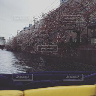 ボートの写真・画像素材[618518]