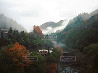 紅葉の山の写真・画像素材[2183687]