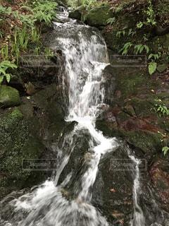 森の滝の写真・画像素材[2264214]