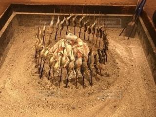 囲炉裏と鮎の塩焼きの写真・画像素材[2275428]