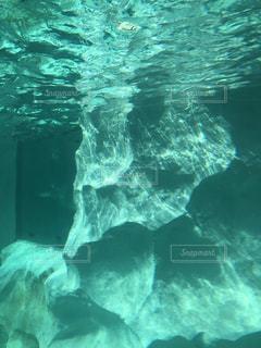 水面を眺むの写真・画像素材[2175501]
