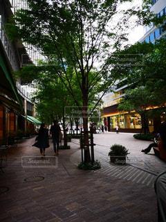 静かな通りの写真・画像素材[2244053]