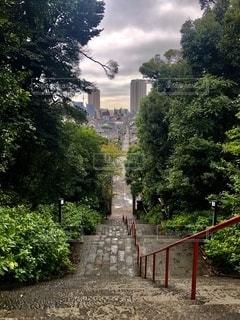 石段からの眺めの写真・画像素材[2646202]