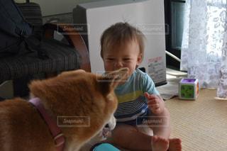 赤ちゃんと柴犬の写真・画像素材[2170641]