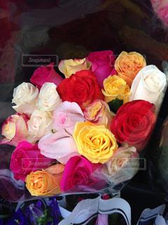 バラの花束の写真・画像素材[2172043]