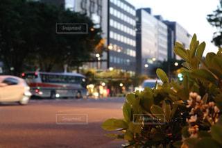 道路とビルの写真・画像素材[2196595]