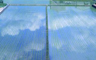 水面に映る雲の写真・画像素材[2212119]