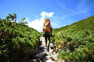 岩の多い丘の上に立っている男の写真・画像素材[2493980]