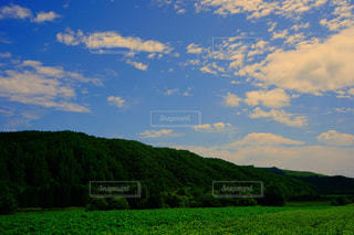HOKKAIDOの写真・画像素材[2360082]